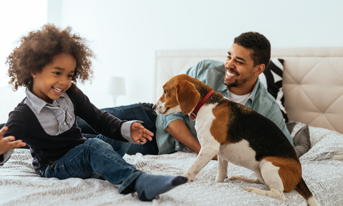 Teaching Your Child to Care For Their First Pet